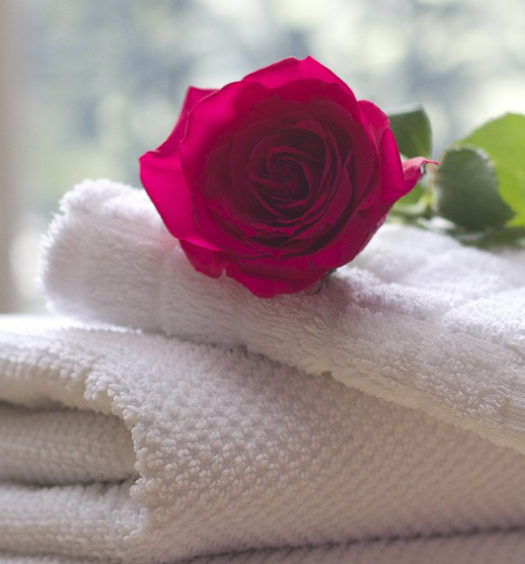 Rose auf einem Handtuch