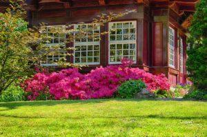 Gartentipps für den Frühling