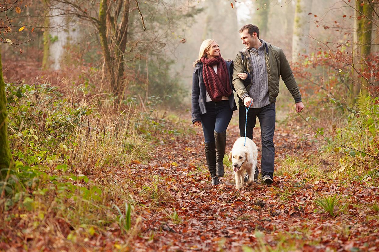 Paar mit Hund im Wald
