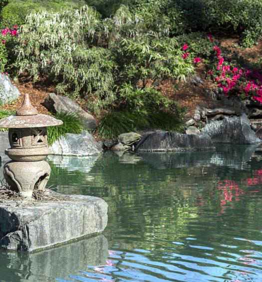 Zen Garten