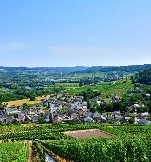 Blick auf Grevenmacher